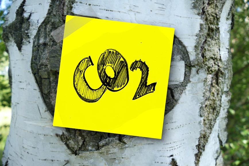 """Förderprogramm: """"Dekarbonisierung in der Industrie"""""""